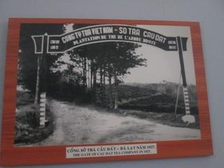 vn4412 .jpg