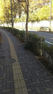 vn4734.jpg