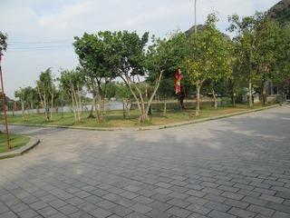 vn5937.jpg