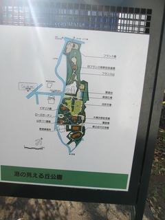 vn7325.jpg