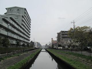 vn8381.jpg